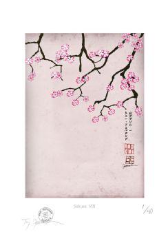 Cherry Blossom Print - Sakura 8
